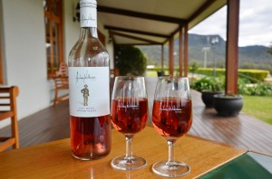 Vinos en Australia (bodega Audrey Wilkinson, Hunter Valley)