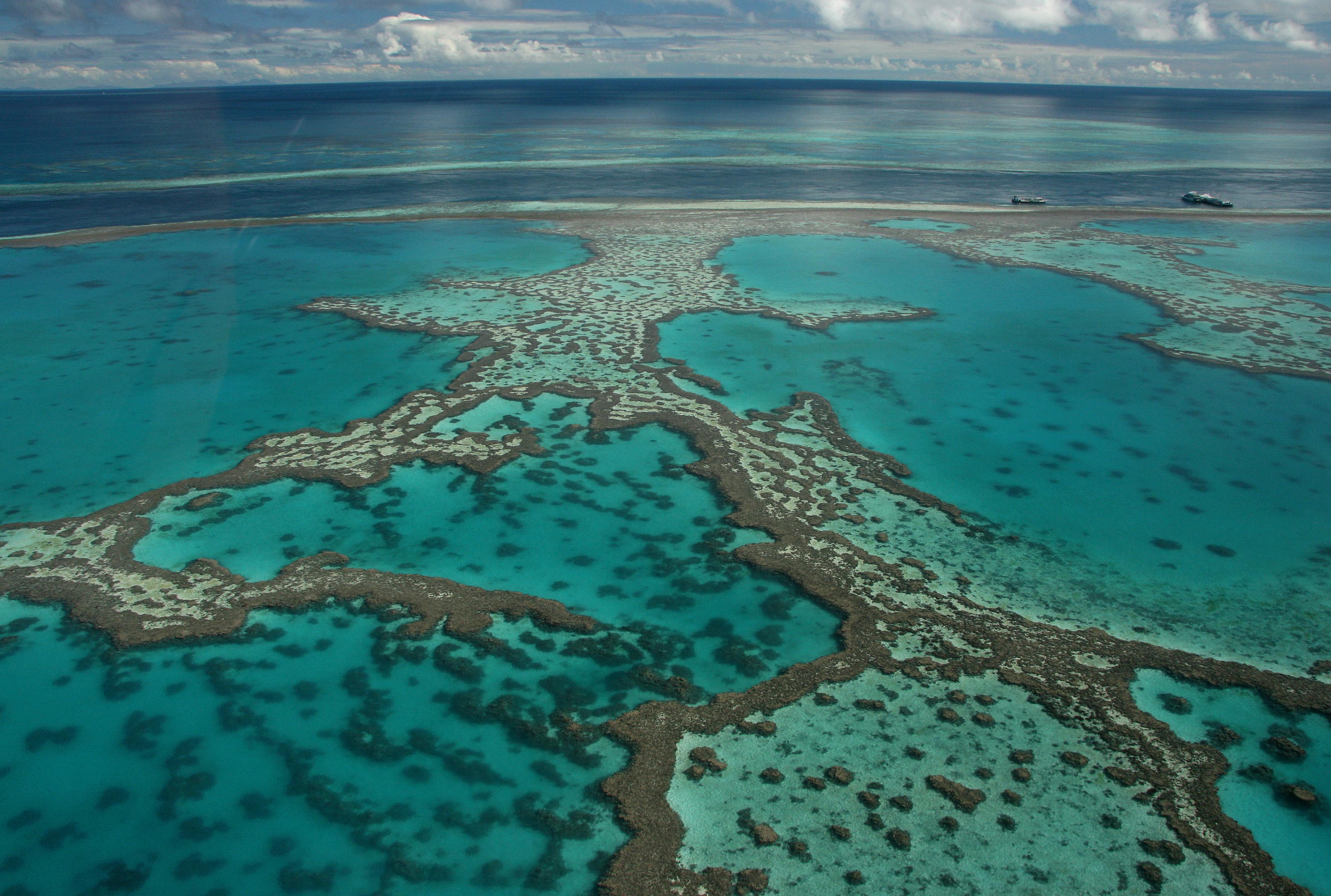 Viajar a Australia (Gran Barrera de Coral)